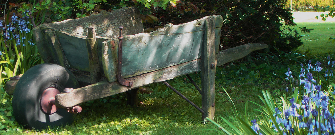 Green antique wheelbarrow surrounded by bluebells